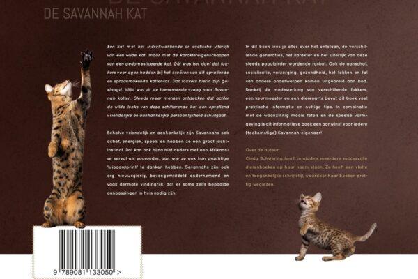 de_savannah_kat_achterzijde_2